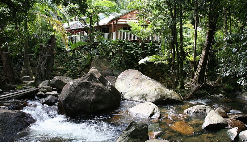Daintree Secrets Rainforest Sanctuary - Over The Creek