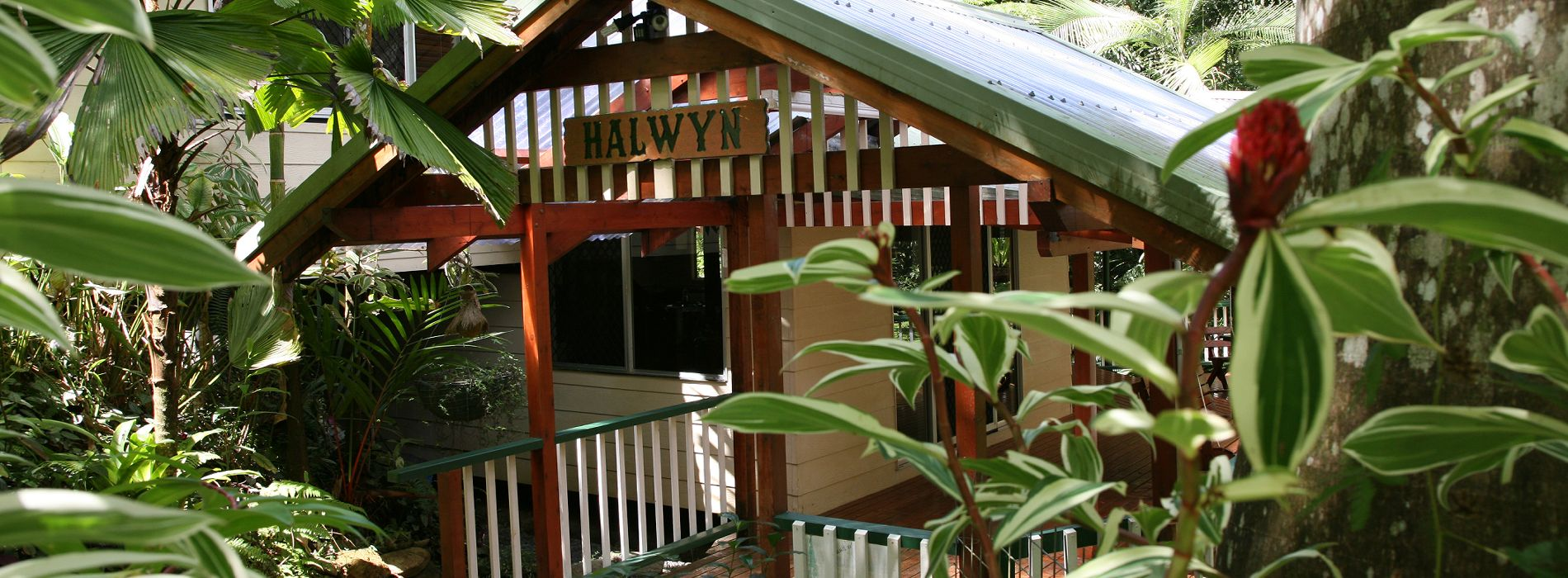 Daintree Holiday Home Daintree Secrets