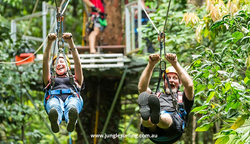 Daintree Tours & Activities - Jungle Surfing