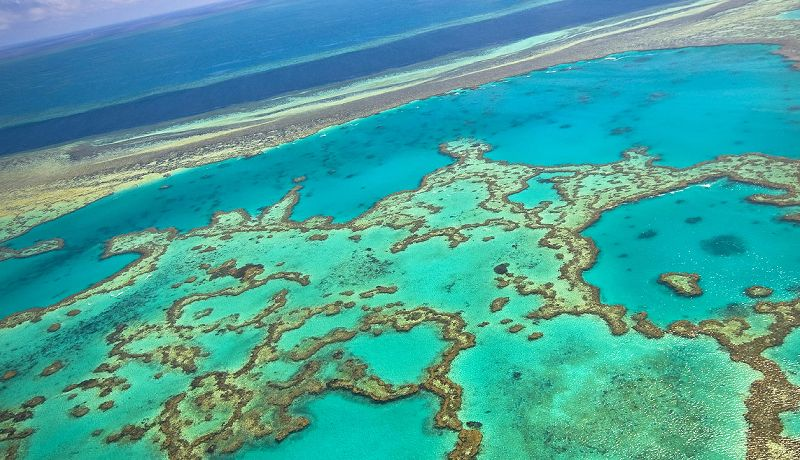 Great Barrier Reef Aerial  - Daintree Secrets Rainforest Sanctuary